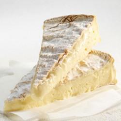 La famiglia dei formaggi Bries