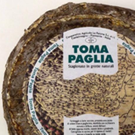 TOMA PAGLIA