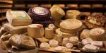 Una collezione di 600 formaggi